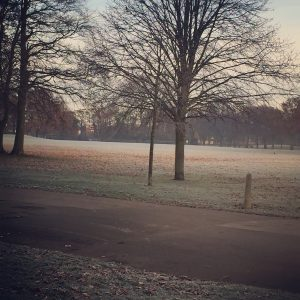 East Park Hull in the frost